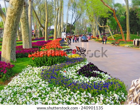ISTANBUL, TURKEY -- CIRCA APRIL 2014: Blooming Alley Gulhane Park on the eve of Easter                         - stock photo