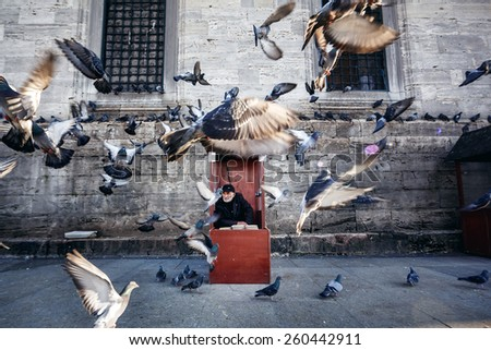 ISTANBUL, TURKEY - NOVEMBER 28: Old photographer in red booth with feed for pigeons flying in front of him, Istanbul, Turkey on November 28, 2014 - stock photo