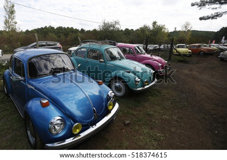 Istanbul, Turkey, 12 October 2016 Classic volkswagen beetles and their owners  was meet at beetle festival in Istanbul.