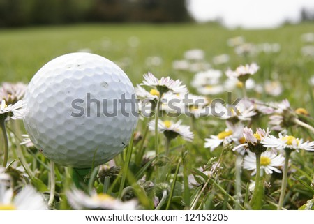 it is of golf ball on a tee in middle of flowers - stock photo