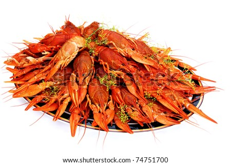 It's a Swedish tradition to eat dill cooked crayfish in August. - stock photo
