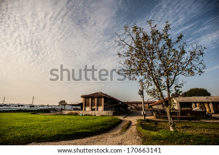 Italian country landscape lombardy - stock photo