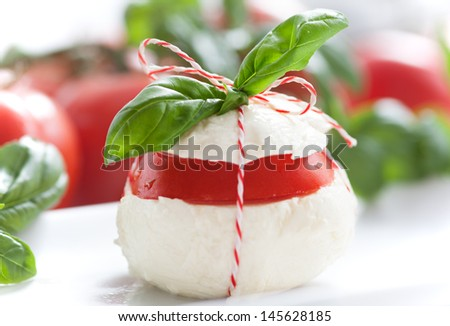 Italian Fresh Buffalo Mozzarella with Basil and Tomatoes - stock photo
