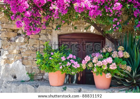 Italian house exterior decorated with hydrangea in flowerpots and Bougainvillea tree. The location is an small town in the middle of the Cilento and Vallo di Diano National Park (Campania, Italy). - stock photo