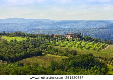 Italian landscape with vineyards and the house on the hill - stock photo