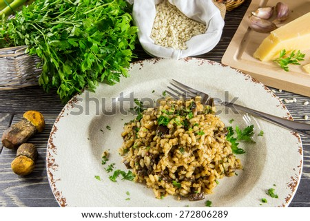 Italian risotto with mushrooms arranged on a wooden table - stock photo