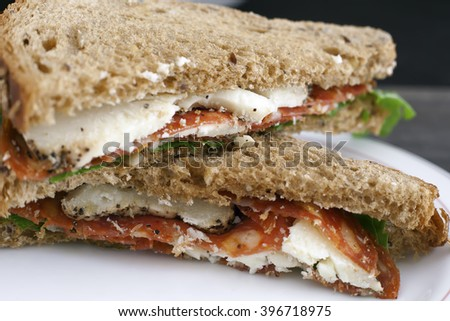 Italian salami and sheep cheese sandwich with brown bread. - stock photo