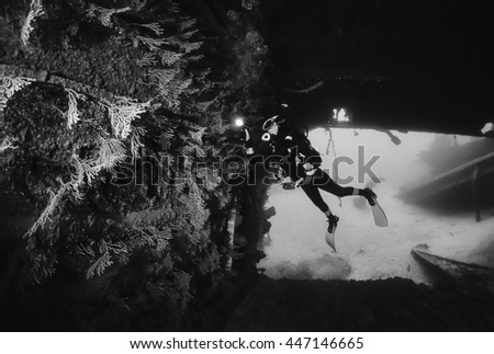 Italy, Ponza Island, Tyrrhenian sea, U.W. photo, wreck diving, yellow gorgonians in a sunken ship (FILM SCAN) - stock photo