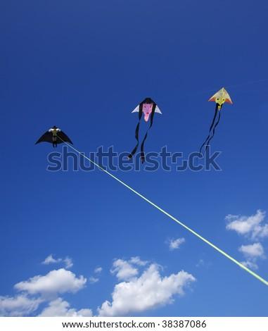 Italy, Rome, Kites competition - stock photo