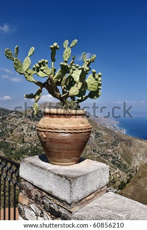 Italy, Sicily, Castelmola (Taormina), view of the sicilian eastern coastline, the Ionian sea and Calabria coast in the background, prickly pears in a vase - stock photo