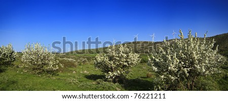 ITALY, Sicily, Catania province, countryside, Eolic energy turbines and almond trees - stock photo