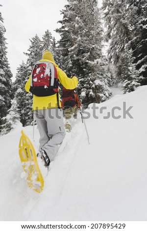 Italy, South Tyrol, Young people snowshoeing, rear view