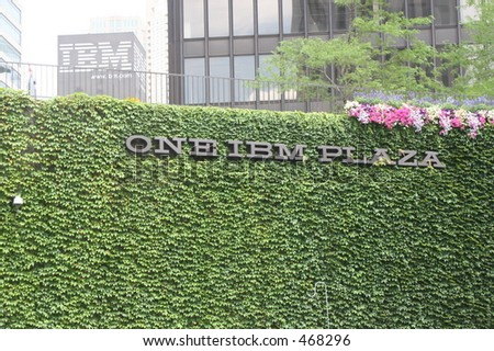 Ivy covered address of IBM building chicago - stock photo