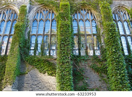 Ivy covered college building with Gothic style windows - stock photo