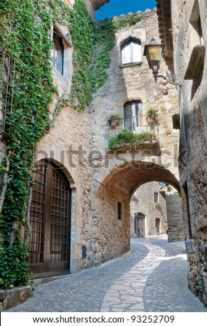 Ivy covered wall on a narrow street in Peratallada, Spain - stock photo
