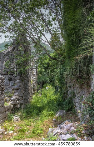Ivy on the wall of an ancient building.Cloudy evening abandoned ancient city.Ruins of the city in the evening.Foggy view of old stone building.The plant grows on the walls of the ruined castle . - stock photo