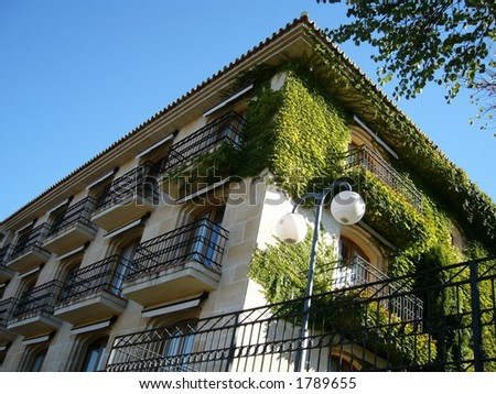 Ivy Terrace on Spanish Property in Ronda