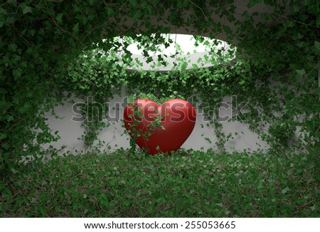 Ivy with leaves growing on the red heart  - stock photo