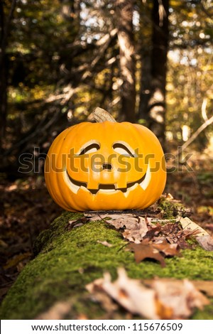 Jack O Lantern in the Woods - stock photo