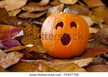 Jack-o-lantern with a surprised expression with colorful fall leaves - stock photo
