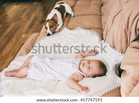 Jack russel terrier dog and cute 3 month baby sleeping together on the bed. - stock photo