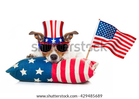 jack russell dog celebrating 4th of july independence day  - stock photo