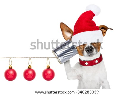 jack russell dog listening carefully what you have to say hiding eyes under santa claus hat,  on the tin can telephone or phone, isolated on white background on christmas holidays - stock photo