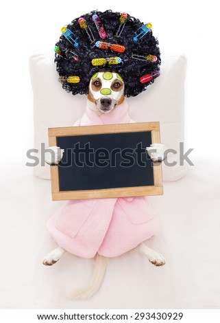 jack russell dog relaxing  and lying, in   spa wellness center ,getting a facial treatment with  moisturizing cream mask and cucumber holding a blank empty blackboard or placard - stock photo
