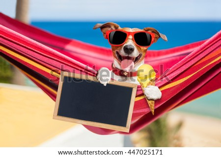 jack russell dog relaxing on a fancy red  hammock  with blank banner, placard or blackboard,  on summer vacation holidays at the beach licking ice cream on a waffle