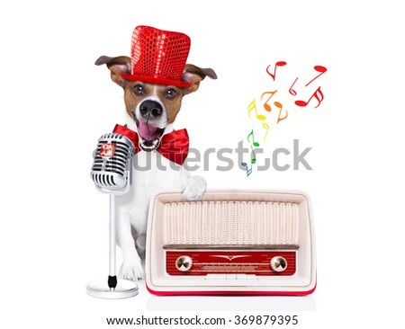jack russell dog , singing a karaoke song or reading the news using a retro mic or microphone, behind retro radio recorder,  isolated on white background - stock photo