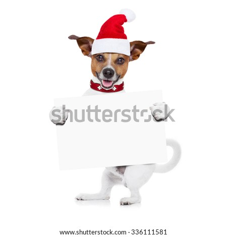 jack russell santa claus dog holding a blank empty placard or banner,or blackboard,  for christmas , isolated on white background - stock photo