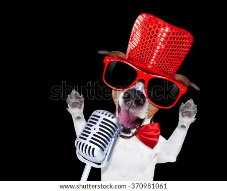 jack russell terrier dog isolated on black background singing with microphone a karaoke song in a night club - stock photo