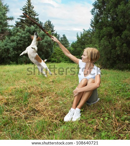 Jack Russell terrier dog jumping, on a field with green grass in the forest. Girl play with dog. - stock photo