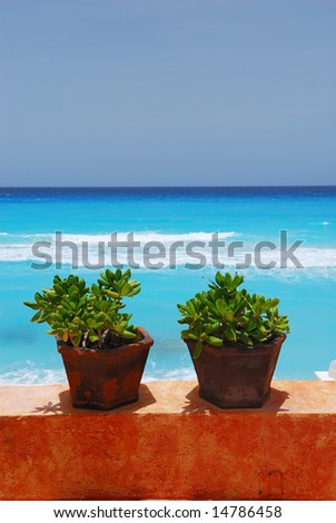 Jade plants and stucco wall with caribbean ocean in background - stock photo