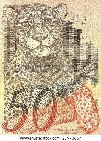 jaguar (panthera onca) on 50 Real banknote from brazil