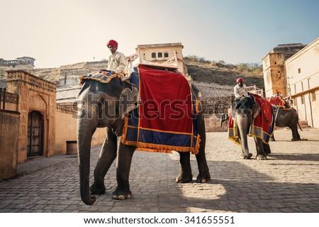 JAIPUR, INDIA - JANUARY 10, 2015: Men on elephants near Amer Fort on January 10, 2015 in Jaipur, India - stock photo