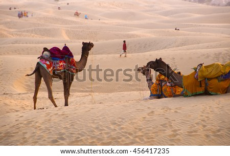 JAISALMER, RAJASTHAN, INDIA, 3 DECEMBER 2009 : Traditionally dressed Rajasthani dancers perform cultural dance at Thar Desert in front of tourist.