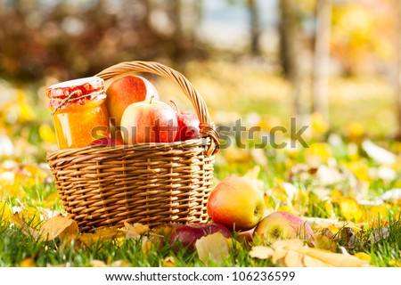 Jam in jar and basket full of fresh juicy apples on a grass. Autumn harvest concept