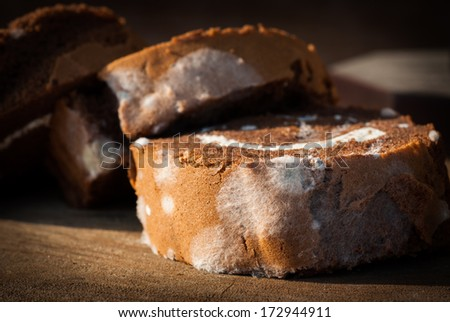 Jam roll cake with mold fungus, no longer suitable for consumption and wooden background