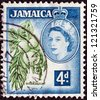 JAMAICA - CIRCA 1956: A stamp printed in Jamaica shows breadfruits (Artocarpus altilis) and Queen Elizabeth II, circa 1956. - stock photo