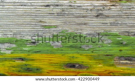 Jamaican colors painted on old wood plank texture. Grunge style for background. - stock photo