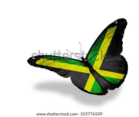 Jamaican flag butterfly flying, isolated on white background - stock photo