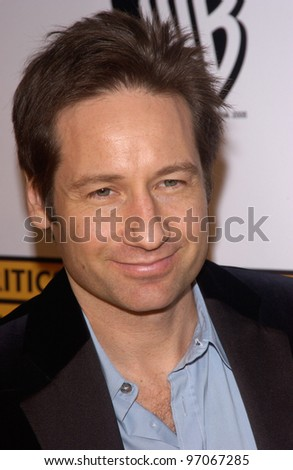 Jan 10, 2005; Los Angeles, CA:  Actor DAVID DUCHOVNY at the 10th Annual Critcs' Choice Awards at the Wiltern Theatre, Los Angeles.
