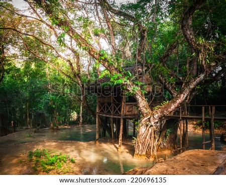 Jangle landscape of tropical rain forest with wooden arbour and bridge at outdoors park near Kuang Si cascade waterfall. Luang Prabang, Laos - stock photo