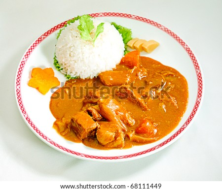 Japanese beef curry style with rice - stock photo