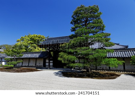 Japanese bonsai trees in a garden on a sunny day.  - stock photo