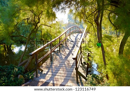 Japanese bridge in Botanical Garden in Wroclaw, Poland - stock photo