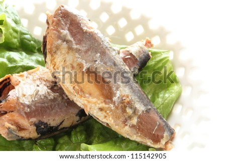Japanese can sardine fish on white dish with copy space