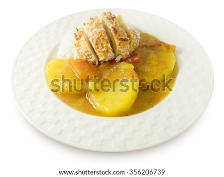 Japanese Cuisine and Food, Deep Fried Pork Cutlet or Tonkatsu Served with Steamed Rice and Curry Sauce. - stock photo