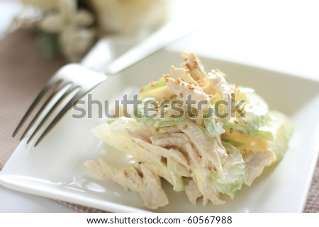 Japanese cuisine,celery and chicken salad, light and healthy - stock photo